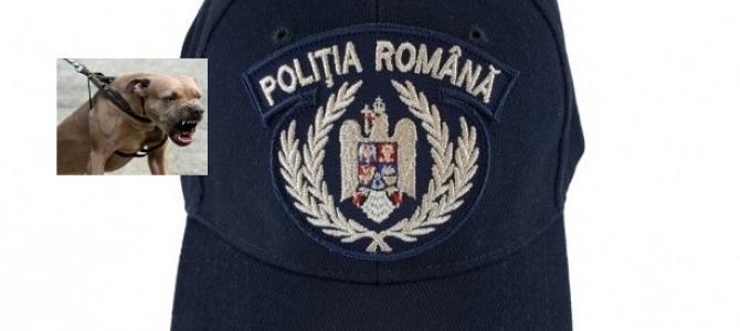 """04.09.2020  COMUNICAT -  Proiectul OUG privind ,,poliția animalelor"""", în dezbatere, azi,  la MAI.  Câteva probleme legate de aplicarea concretă a unor asemenea reglementări,  care transformă polițiștii în hingheri cu uniformă"""