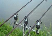SNPPC din DGPMB organizeaza concurs de pescuit