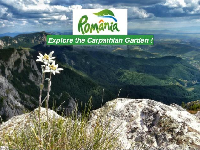 02.05.2018 - Decontarea serviciilor turistice, conform Legii nr. 80/2018